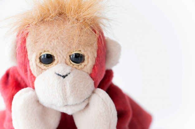 Little red monkey smiling happy