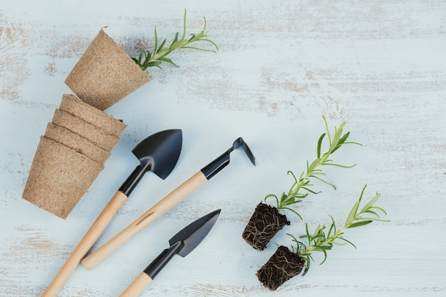 정원 도구 옆에 있는 검은 흙에 작은 로즈마리 묘목과 나무 배경 꼭대기에 있는 공예 냄비. 원예 및 심기 평면 평신도 개념