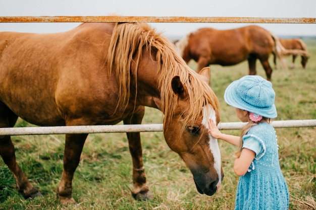 Little scared funny child feeding wild horse with grass. wary frightened girl touching horse muzzle outdoor at nature. overcoming fear. animal expressive face. lovely kind kid in blue beautiful dress
