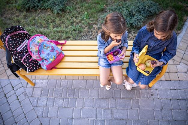 Маленькие школьницы сидят на скамейке в школьном дворе и едят из ланч-боксов.
