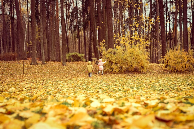 Little sibling kids girl and boy walk in the autumn park and study the environment nature. exploring the world. behind and rear view