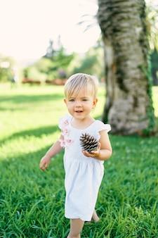 小さな笑顔の女の子は彼女の手に大きなモミの円錐形の緑の芝生の上に立っています