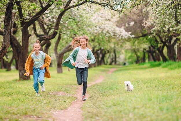 공원에서 강아지와 함께 연주 웃는 소녀
