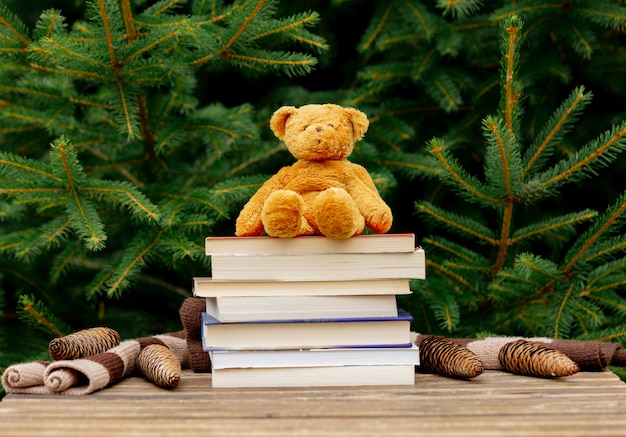 Little teddy bear toy and books on wooden table with spruce branches on background