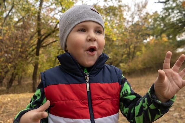Маленький трехлетний мальчик на открытом воздухе портрет. мальчик малыша гуляет в парке. милый мальчик в флисовой куртке и куртке без рукавов на кемпинге в лесу