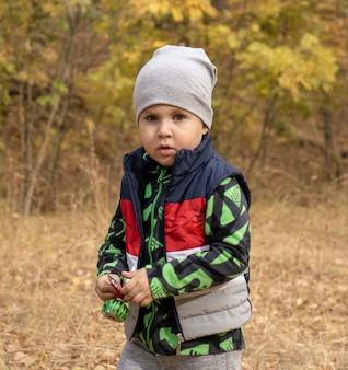 Маленький трехлетний мальчик на открытом воздухе портрет. мальчик малыша гуляет в парке. милый мальчик в флисовой куртке и куртке без рукавов на кемпинге или пикнике в лесу