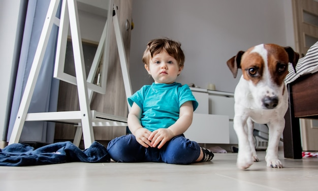 Little toddler boy play at home with his jack russell terrier dog.
