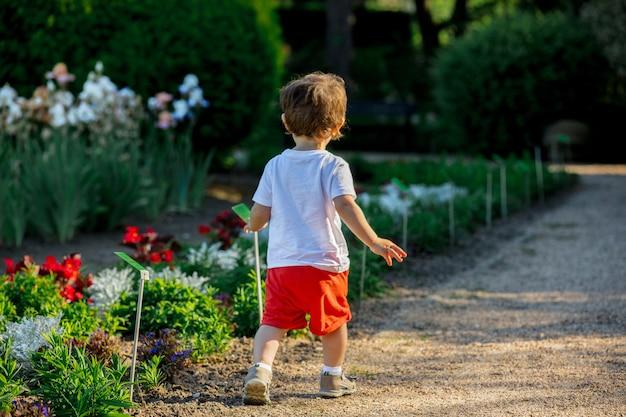 Little toddler boy walking down on alley in a park