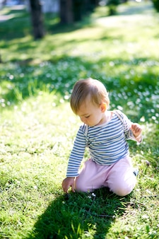 Little toddler sits on his knees in a meadow of flowers