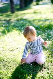 小さな幼児は花の牧草地で彼の膝の上に座っています
