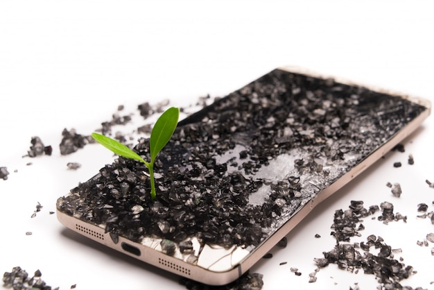Little tree growing on broken smartphone, environment, knowledge and innovation