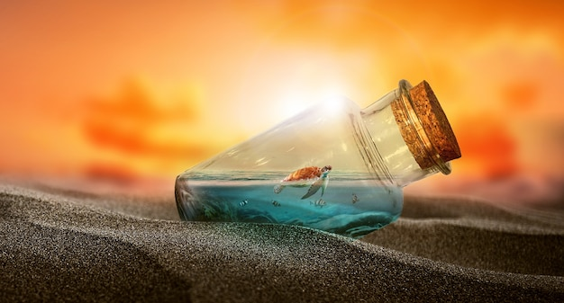 A little turtle in bottle   a bottle of water in the desert  at sunrise  fantasy  imagination