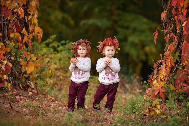 작은 쌍둥이 소녀가 사과 가을 정원을 들고 건강한 영양 할로윈과 추수 감사절 시간