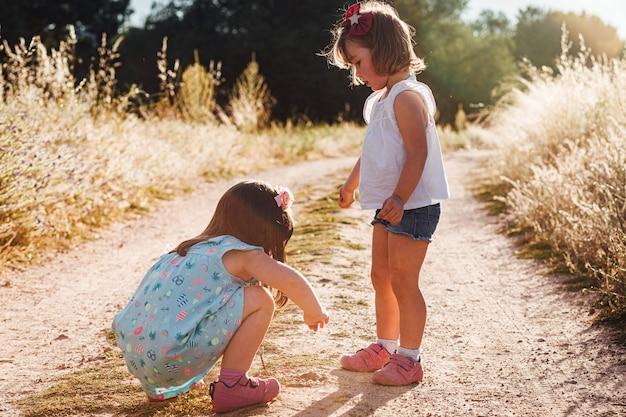 Маленькие девочки-близнецы играют на поле летом на закате