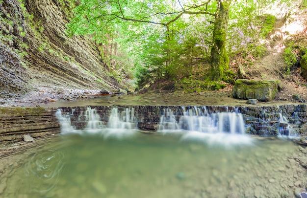 絹のような泡立つ水と山の森の小さな滝