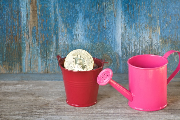 Little watering can and coin bitcoin in pot. old wooden background. business concept