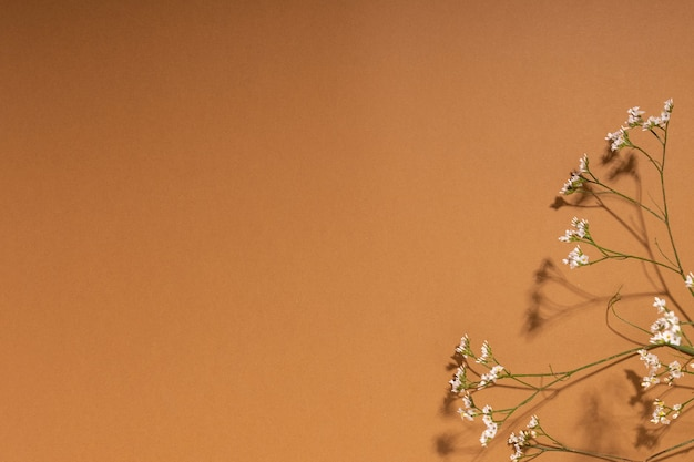 あなたのデザインのためのコピースペースと茶色の背景にカスミソウの花の小さな白い花の詳細...