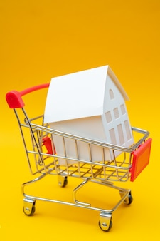 Little white paper house in trolley