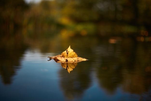 Маленькая лодка с желтыми листьями посреди озера