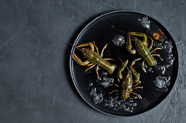 Live crayfish on a plate of ice.