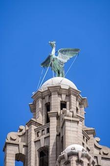 Статуя птицы печени на вершине здания liver building в ливерпуле, англия, 14 июля 2021 года.