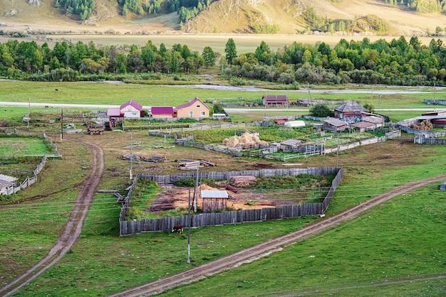 Livestock farm in village russia mountain altai ongudaysky district village of bichiktuboom