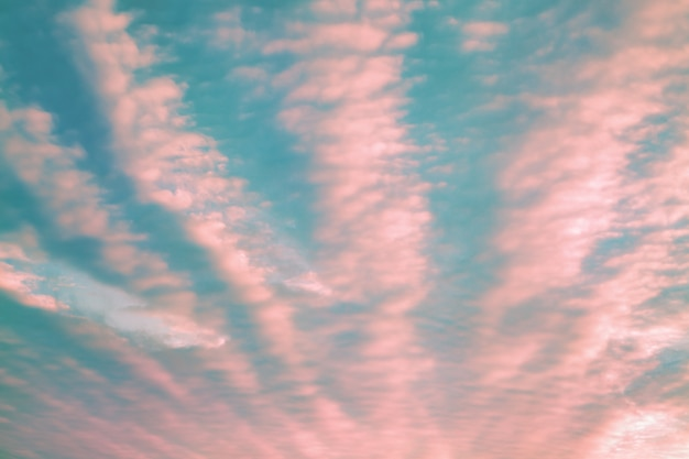 Living coral color of the year 2019 and blue sky with fluffy clouds abstract background