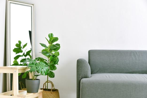 거실 인테리어 디자인, 현대 패브릭 소파가있는 가정 장식 및 실내 공기 정화를위한 녹색 실내 식물.