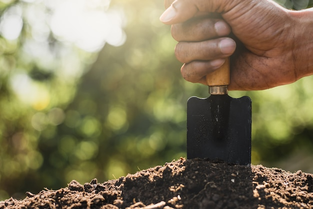 Loam for cultivation.