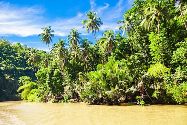 Река лобок и джунгли на острове бохол на филиппинах