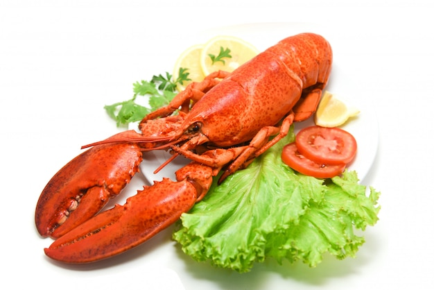 Lobster isolated seafood delicious on white plate with lemon coriander and salad lettuce / close up of steamed lobster food