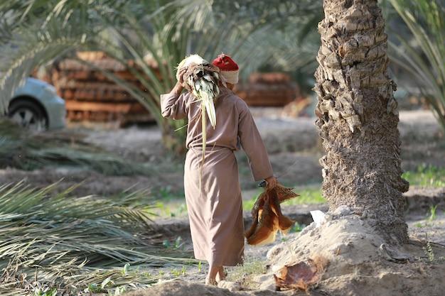 지역 농부 농업 원예 또는 생태 개념