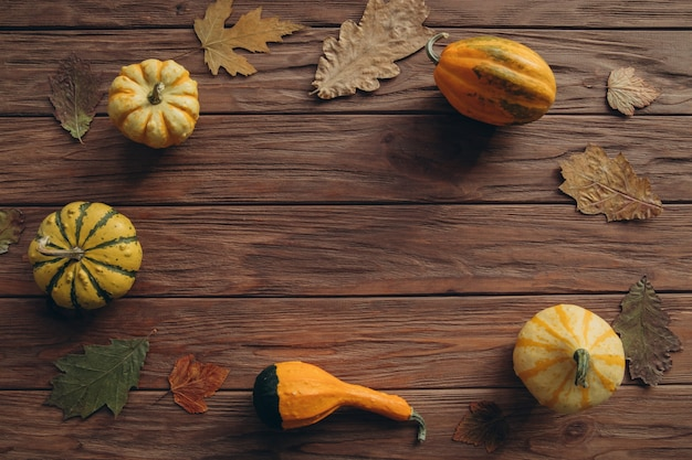 地元産のカボチャ、秋のドライオーク、カエデの葉を木目調のテーブルに飾ります。