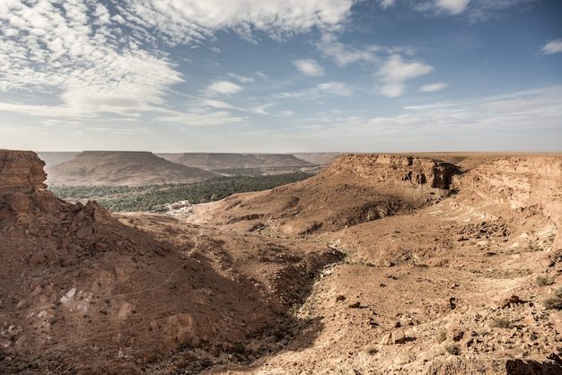 地方、砂漠の森ziz valley morocco