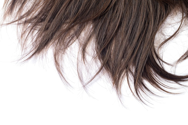 Lock of dark brunette straight hair care or extension concept