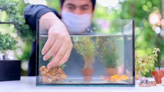 새로운 물고기와 탱크 장식으로 잠금 및 자가격리. 코로나 바이러스 위기 동안 녹색 정원에서 레크리에이션. 휴식과 사회적 거리두기를 위해 집에 머무르세요.