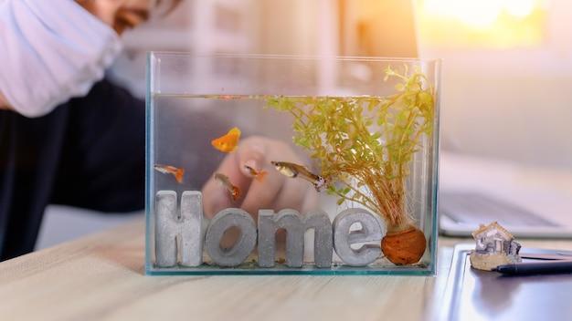 잠금 및 자가격리. 탱크에 물고기와 함께 집에서 일하십시오. 코로나 바이러스 위기 동안 레크리에이션. 휴식과 사회적 거리두기를 위해 집에 머무르세요.