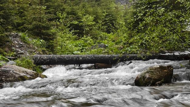강 긴 노출 위의 로그