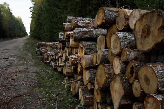 林道沿いの丸太の山。森の松とトウヒの木。丸太の幹の山、伐採材木産業。高品質の写真