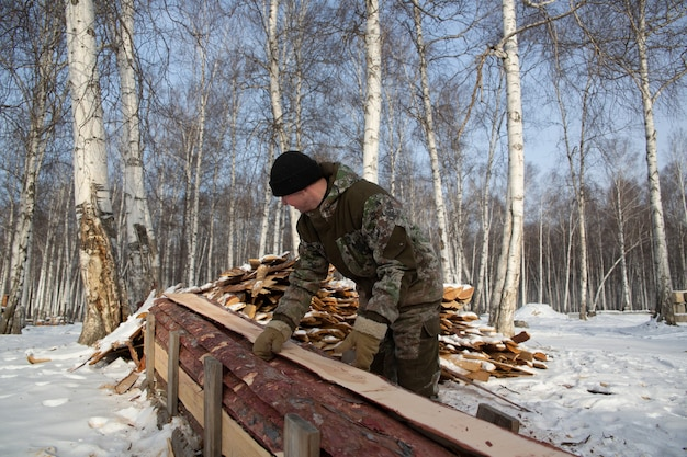 A logger saws, a tree in the forest in winter, in russia for firewood.