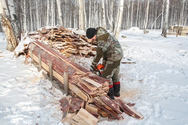 A logger saws a tree in the forest in winter, in russia for firewood.