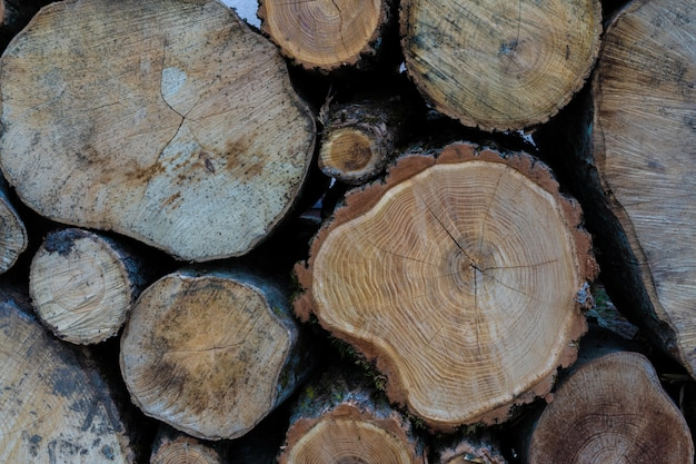 Logs lie on top of each other