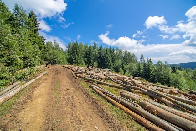 신선한 커트 나무의 통나무는 운송 준비가 된 숲의 더러운 길 옆에 놓여 있습니다.