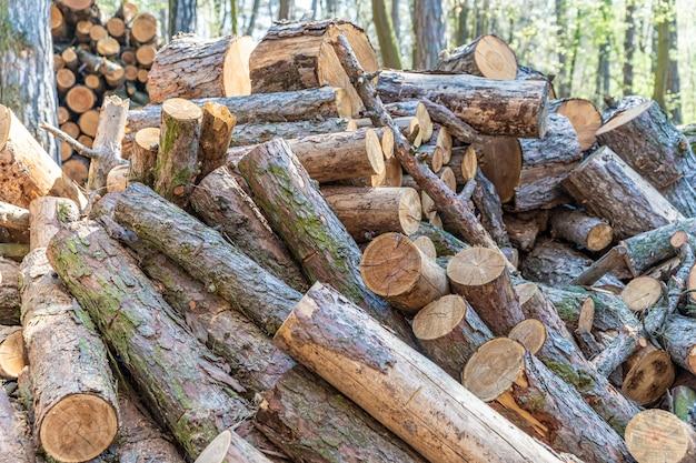 Бревна в куче готовых для рубки и рубки на дрова в камине и котле