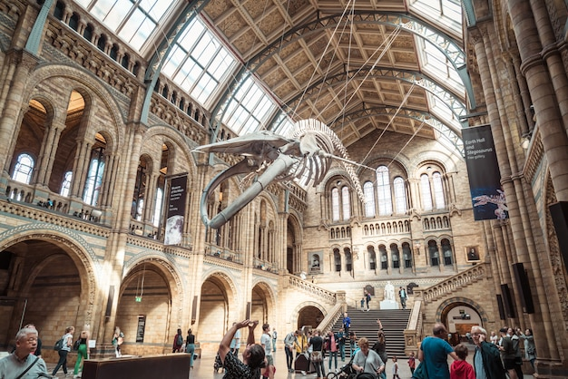 London   sep 4, 2019. people visit natural history museum in london.