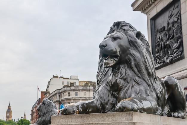 런던, 영국 - 2014년 7월 10일 - 백그라운드에서 빅 벤이 있는 트라팔가 광장의 넬슨 기둥 기슭에 있는 사자 조각. 프리미엄 사진