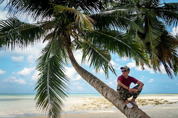 A lone palm tree on the caribbean sea, on the background of blue sea and sky. on the shore rests and relaxes tourist, sitting under an exotic tree. young guy sitting in the shade of palm leaves