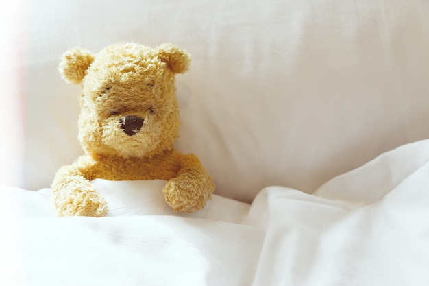 Lonely bear is alone in bedroom.