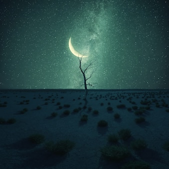 Lonely dry tree in desert on night landscape, stars and moon above, climate change. vintage stylization, retro film filter