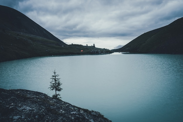 Lonely fir against mountain lake water in dusk. dark landscape with orange tent near mountain lake in highland valley under cloudy sky in dark time. dark scenery with one tree against highland lake.